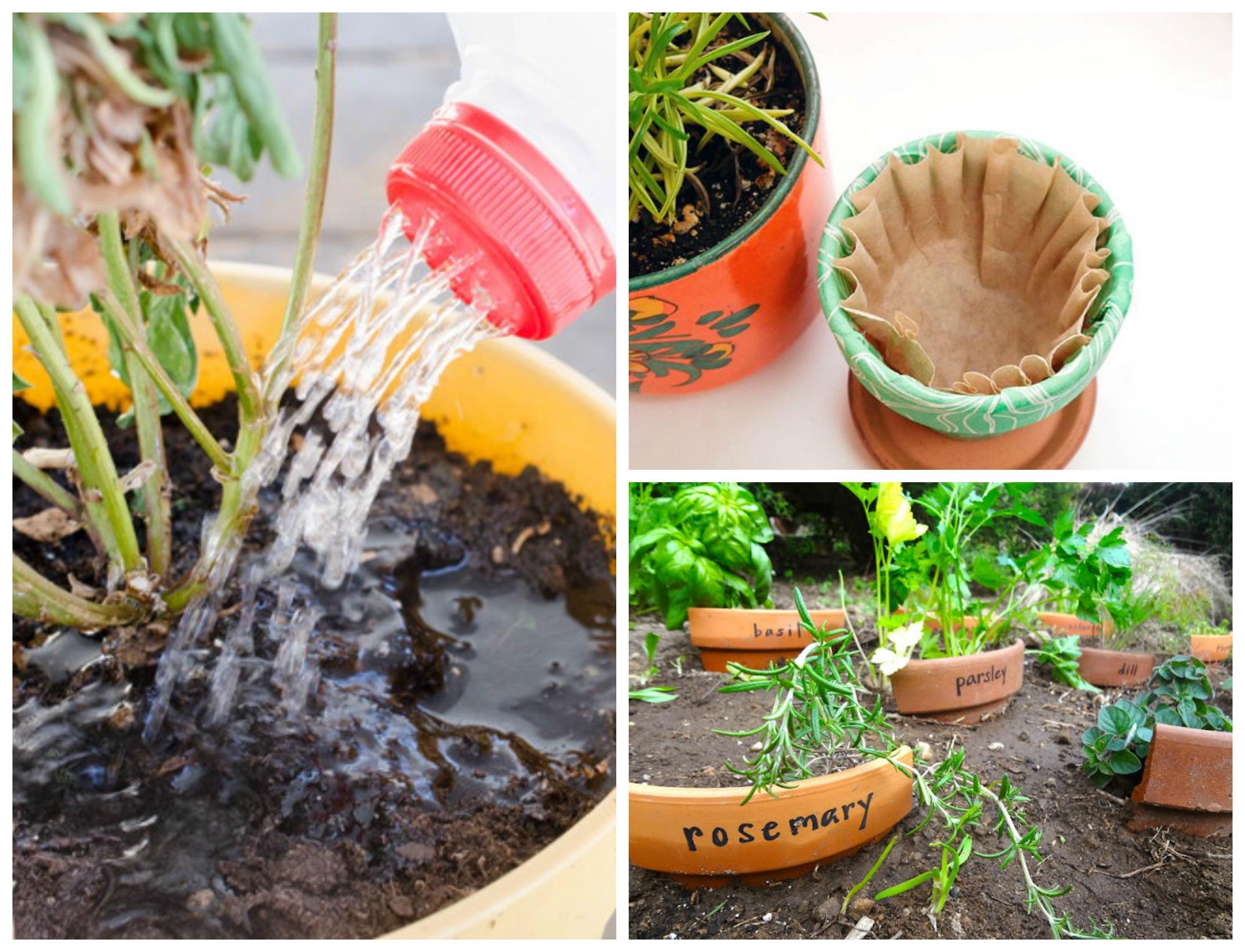 11 easy gardening hacks and tips youll wish youd known sooner - Garden Hacks
